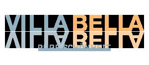 logo_vb2
